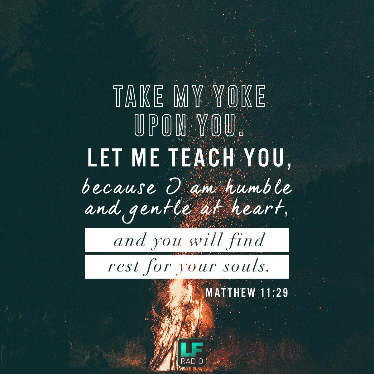 Matthew 11:29 - Verse of the Day