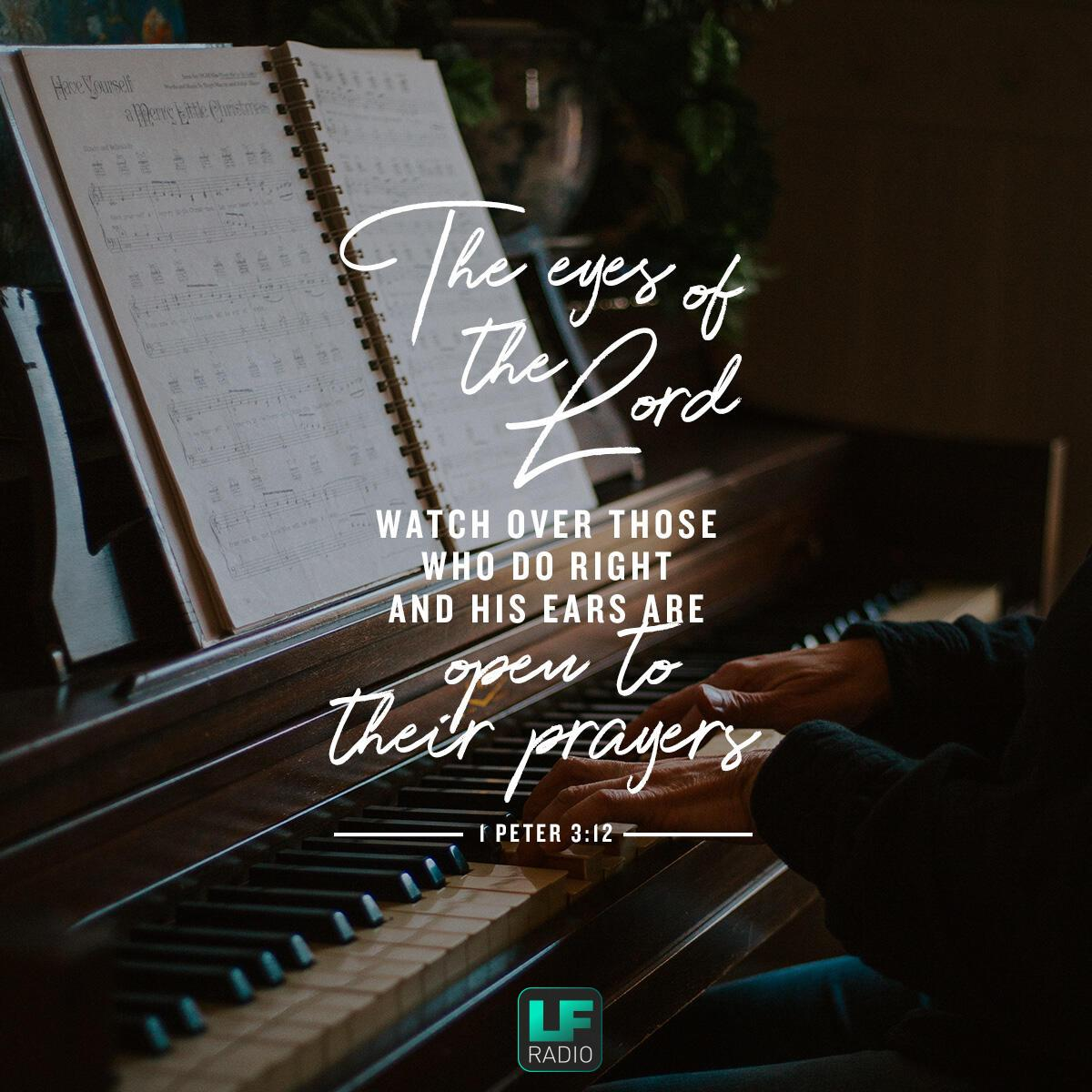 1 Peter 3:12 - Verse of the Day