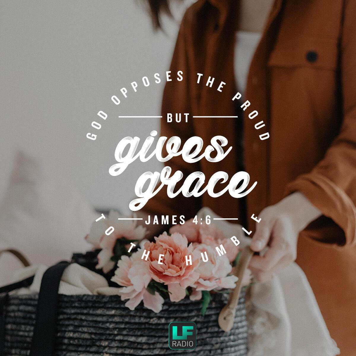 James 4:6 - Verse of the Day
