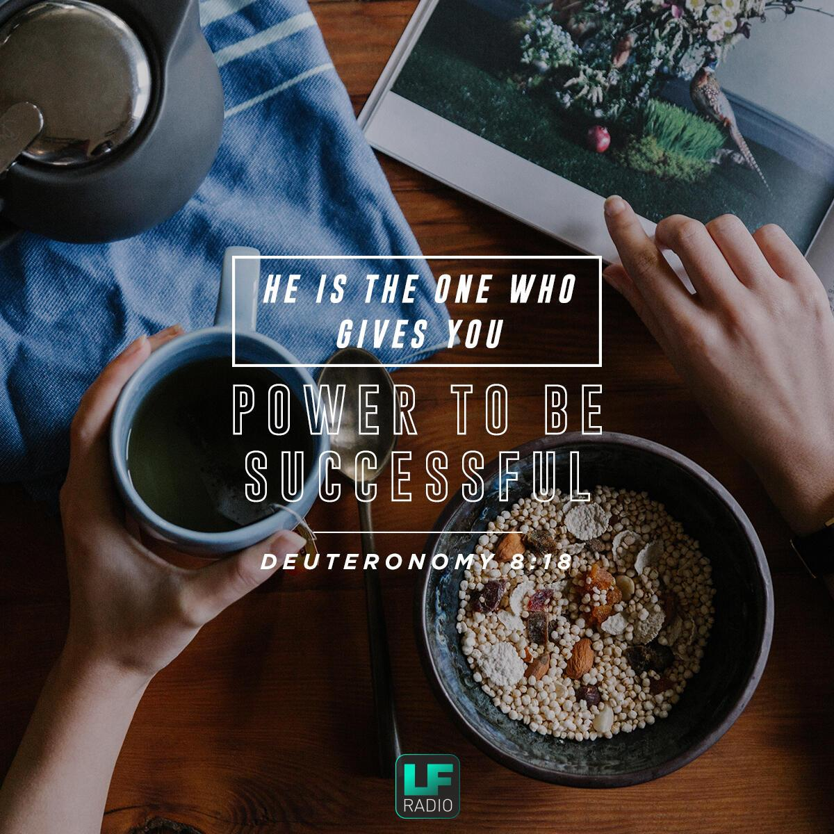 Deuteronomy 8:18 - Verse of the Day