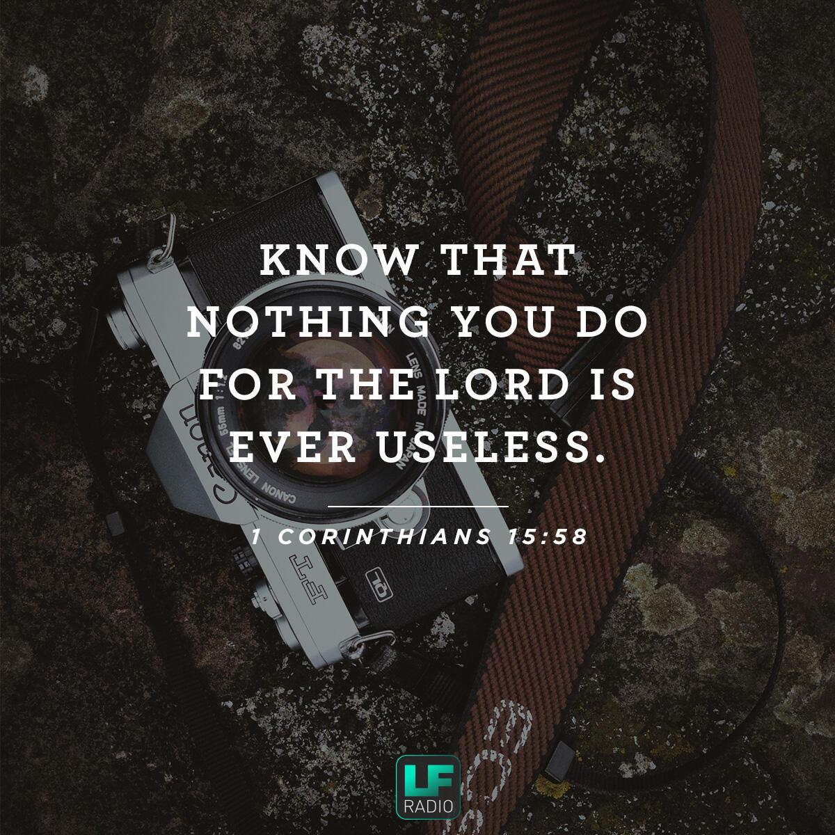 1 Corinthians 15:58 - Verse of the Day