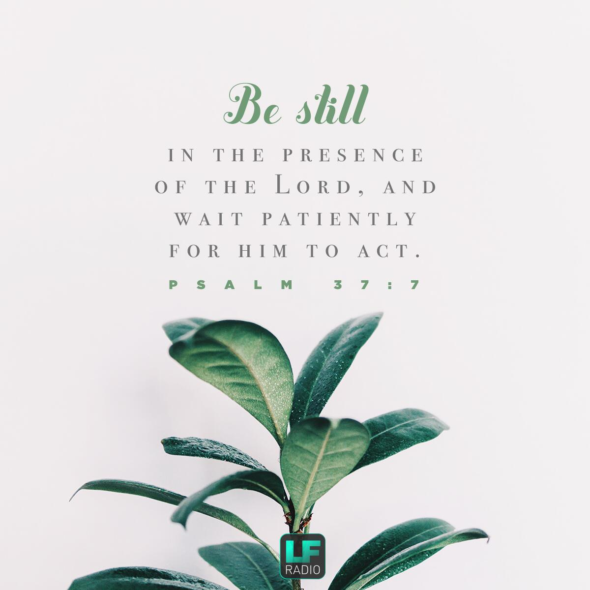 Psalm 37:7 - Verse of the Day